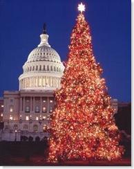 ChristmasTree2005_NM_sm